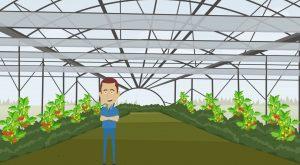 2D Cartoon animatievideo Van der Valk Horti Systems 3 - EVA Explainer Video Agency